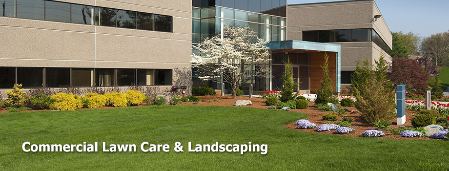 Lawn And Landscaping Fredericksburg Va Affordable Lawn And